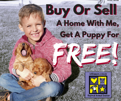 Puppy Promo (For Website Sidebar)